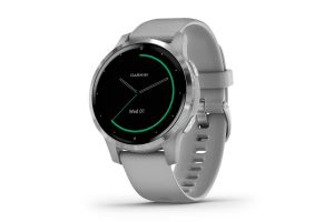 Montre Intelligente Garmin Vivoactive 4S Music Powder Gris/Argent